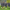 Beşiktaş'ta derbi mesaisi devam etti